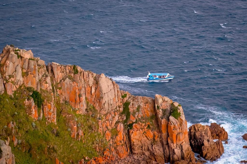Ecoboat Cape Tour