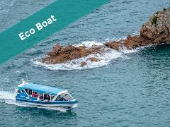 EcoBoat - Cape Explorer Tour