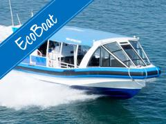 EcoBoat - Seals Adventure Tour