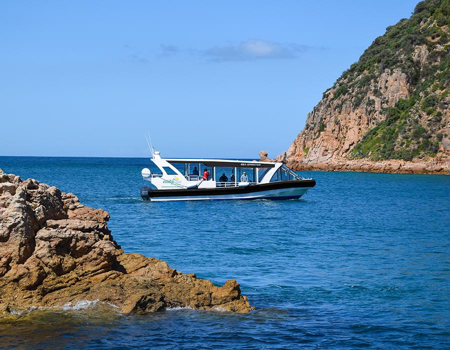 Sprinter Cape Cruise