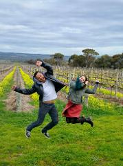 MCLAREN VALE FULL DAY WINE TOUR