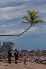 Corcovado and Terraba-Sierpe Mangrove Boat Tour