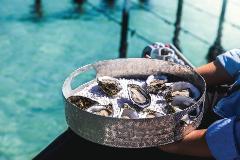 1-Day Port Lincoln & Coffin Bay Private Luxury Tour