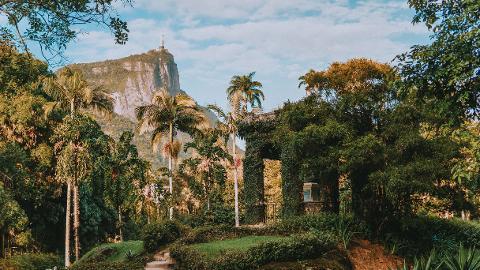 Río Naturaleza - Bosque de Tijuca y Jardín Botánico