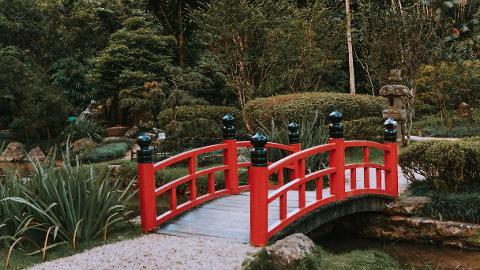 05_Botanical_Garden