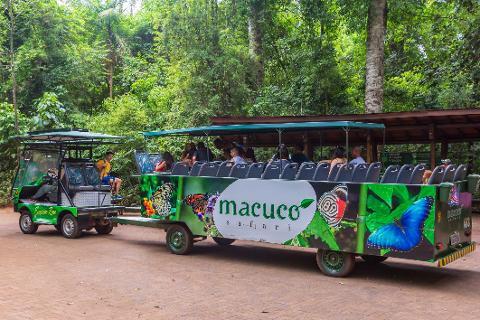 06_Macuco_Safari