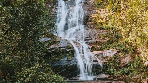 09_Tijuca_Forest