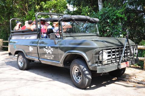 Tijuca Regenwald und Botanischer Garten im Militärjeep