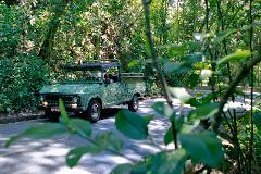 Tijuca Regenwald im Militärjeep