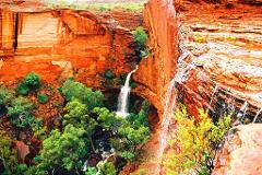 1 Day Kings Canyon Tour