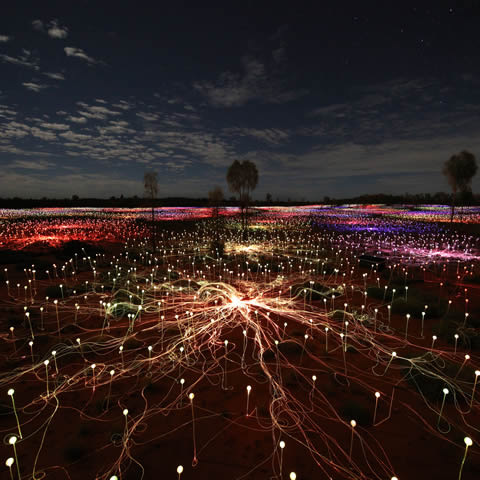Field of Light Pass (departure 3)