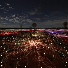 Field of Light Pass (departure 3)