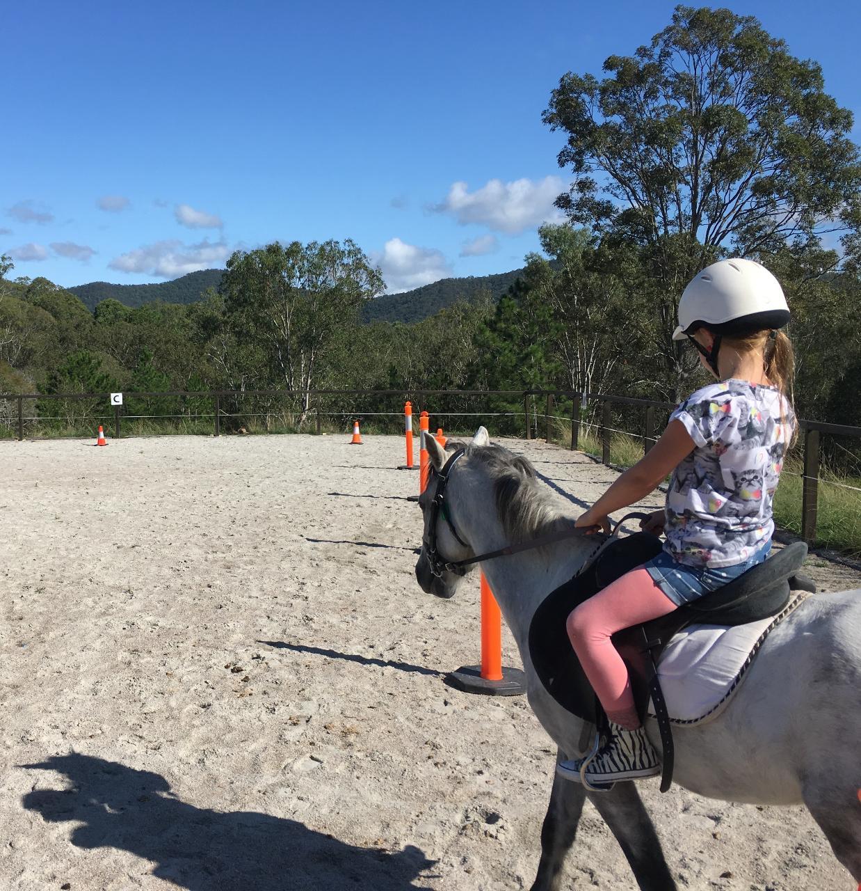 15min Horse Riding Experience
