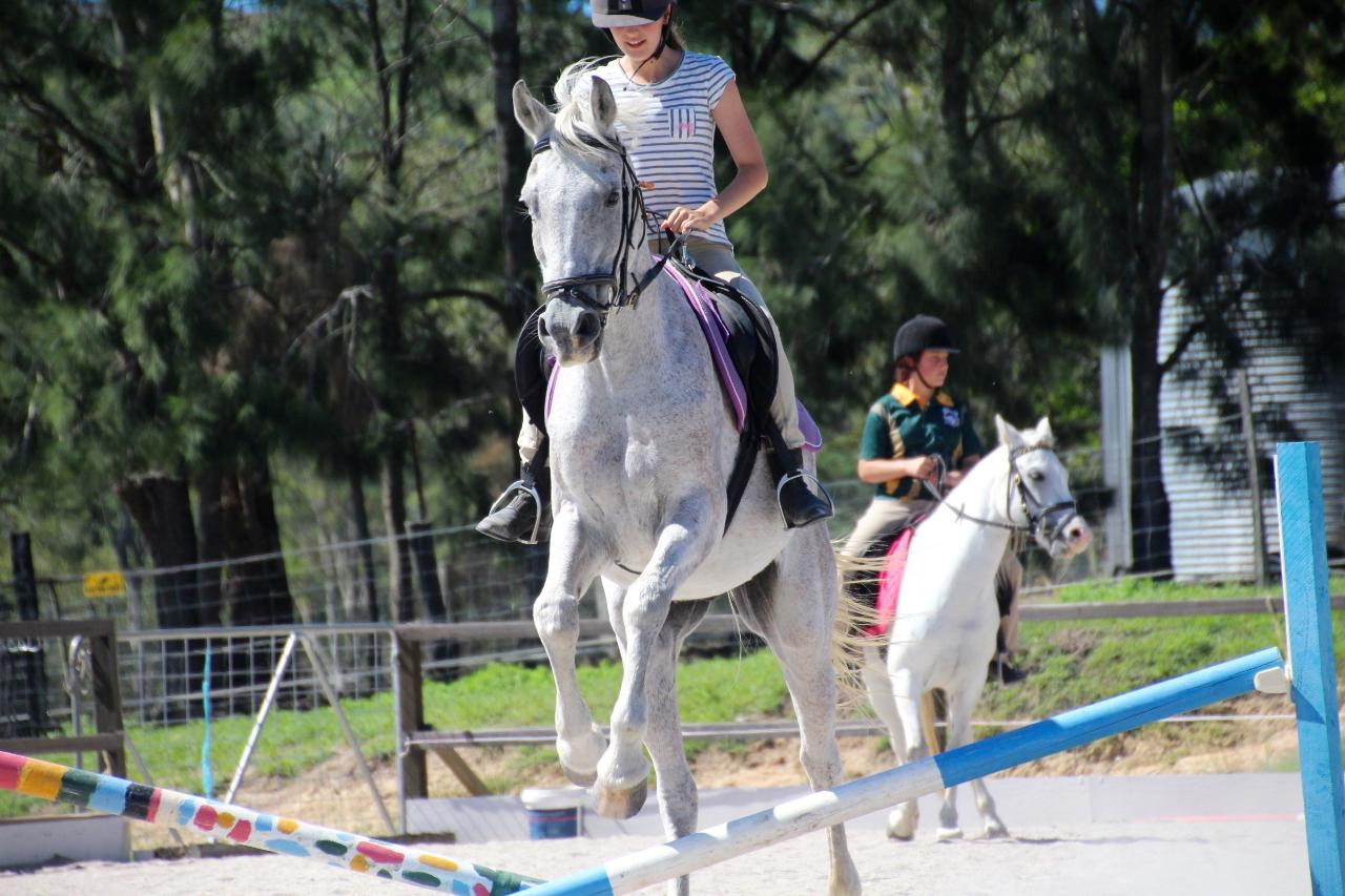 30min Holiday Horse Riding Lesson