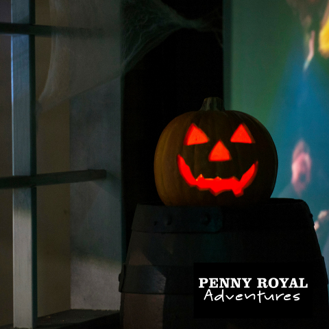 Halloween Month All Attractions Pass - Adults at Kids Prices!