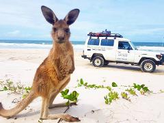 Experience Bribie Island with a Private Booking
