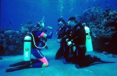 DSD (Discover Scuba Diving)