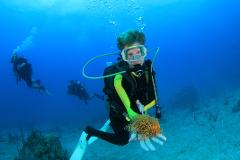 2 Tank Scuba Dive - 2 Day Package