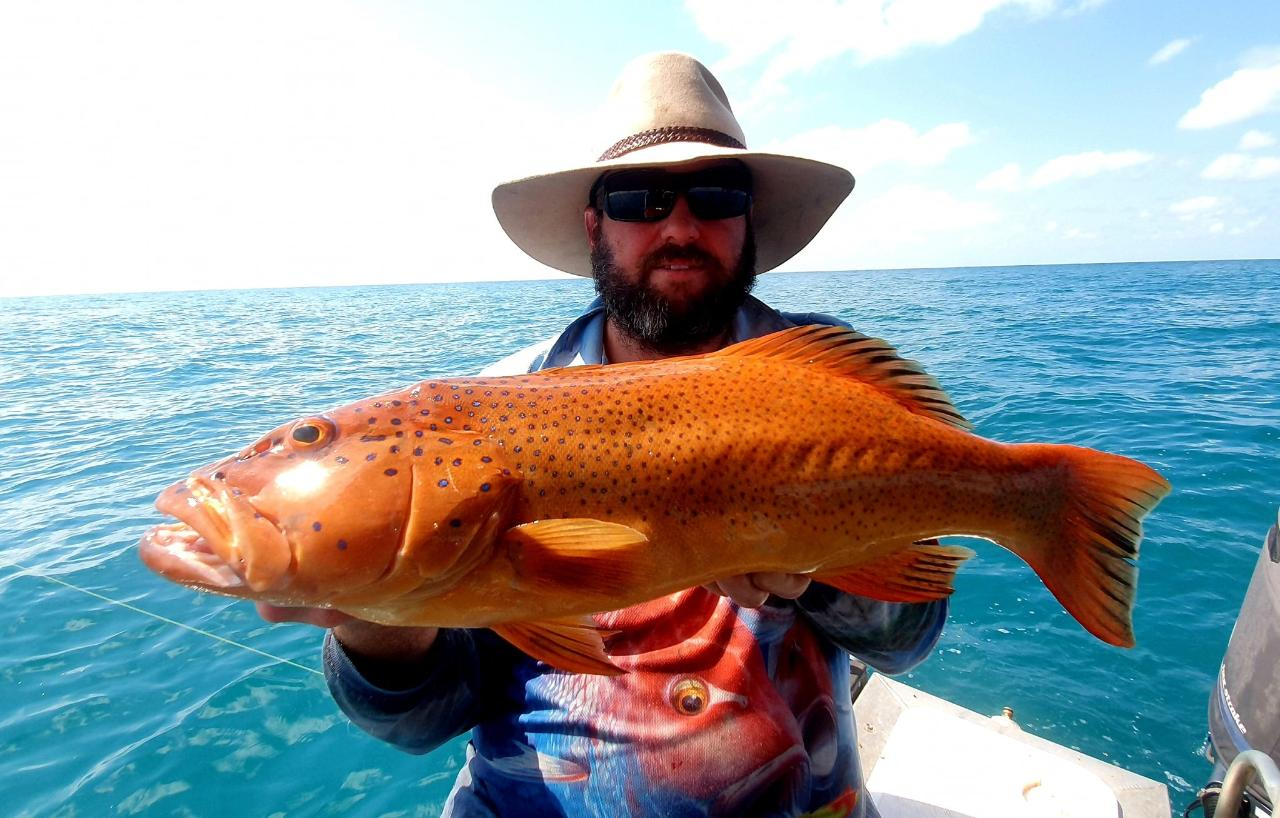 Private Full Day Reef & Sport Fishing Charter
