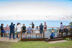 Walking Tour: Giingan Cultural Experience