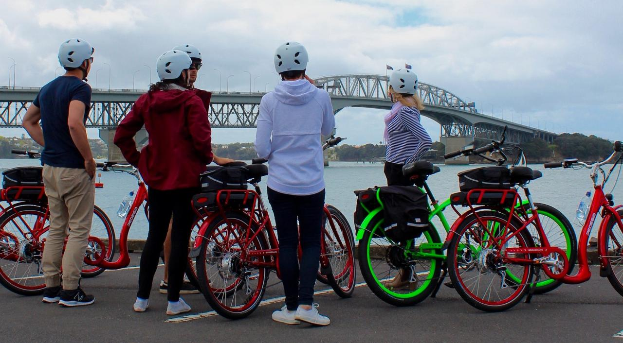 Explore Auckland Combo  -  10am walking tour: 2pm e-bike tour
