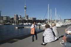 Auckland Waterfront Sights and Bites afternoon walking tour