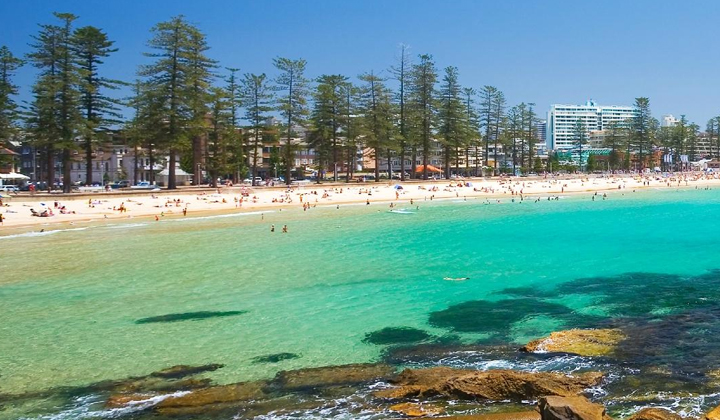 Northern Beaches Private Tour