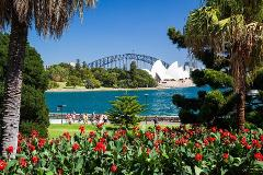 See Sydney in Style  - 8 Hour Private Day Tour