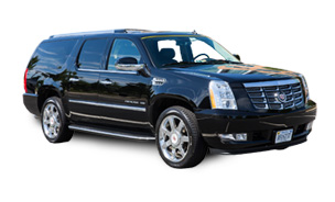 PRIVATE BLACK HISTORY AND HERITAGE TOUR SUV