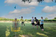 Learn to Play Disc Golf