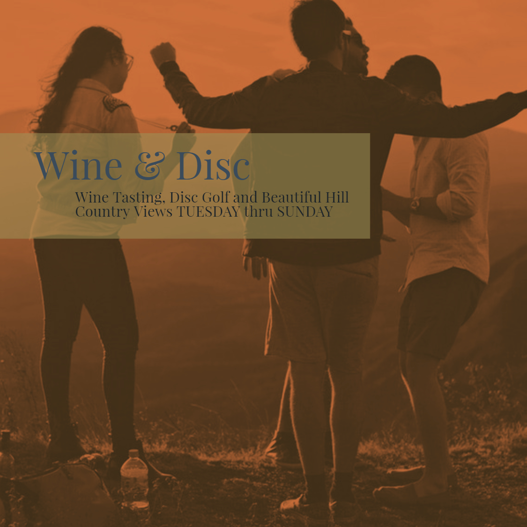 Texas Wine & Disc Experience
