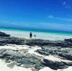 Bayside Explorer's Amazing Depths - Blue Hole - Full Day Tour