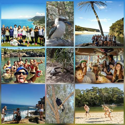 Royal National Park Day Trip for Backpackers, Students and travellers 18 to their mid 30s