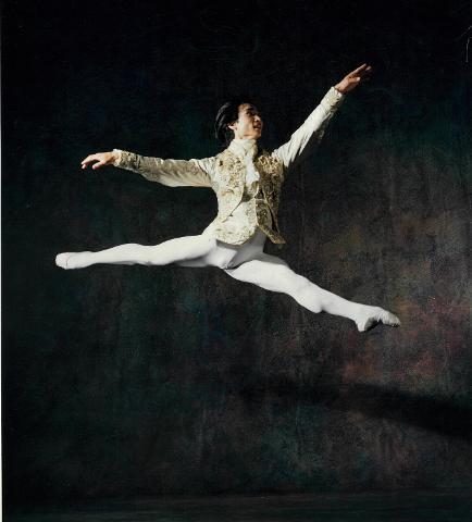 Mao's Last Dancer the exhibition Curator-led tour