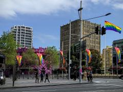 Sydney's Original Gayborhood Walking Tour