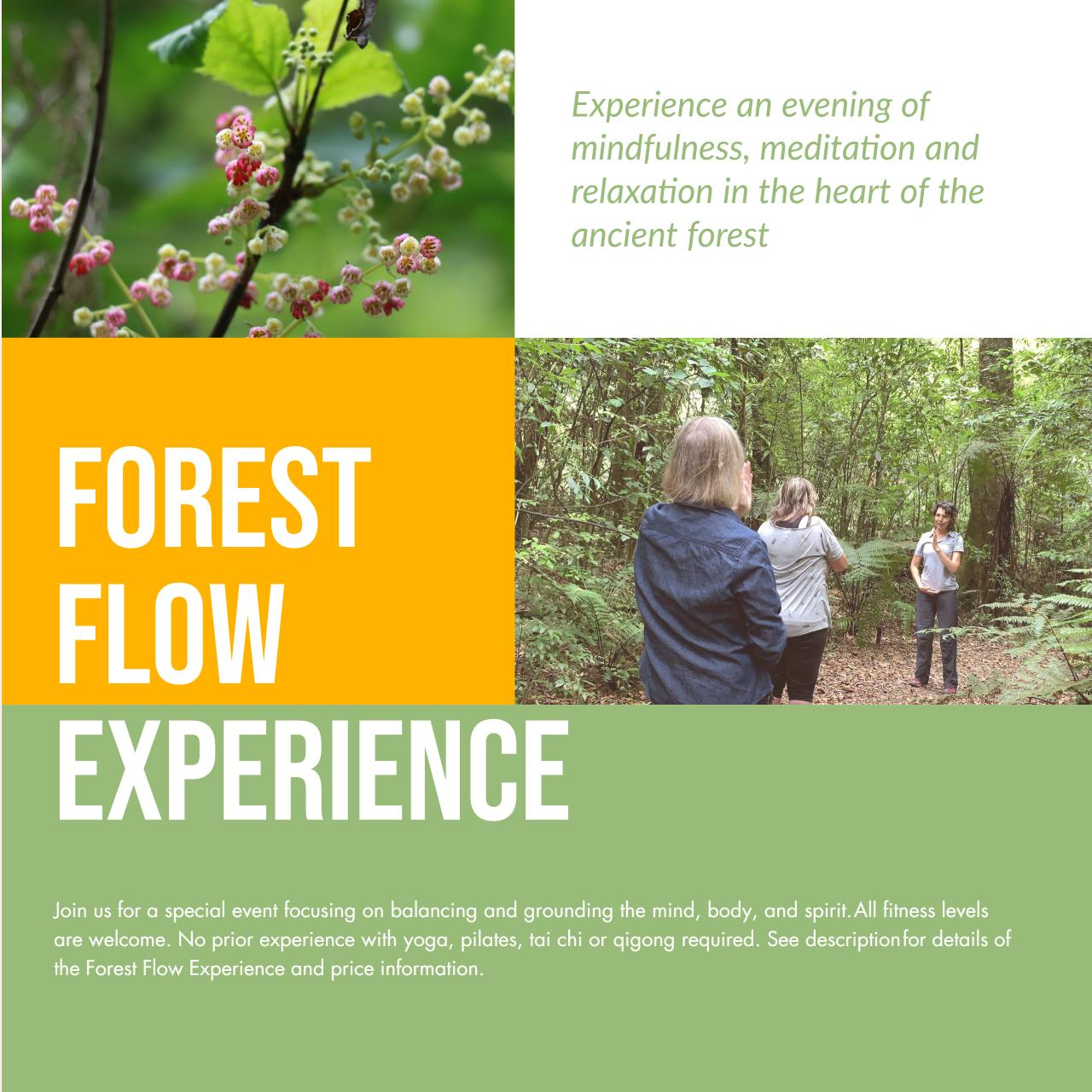 Forest Flow Experience - 7th February