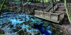 SUP Away - Hamurana Springs & Lake Tarawera