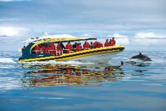 布鲁尼岛三小时巡游-海上旷野之旅
