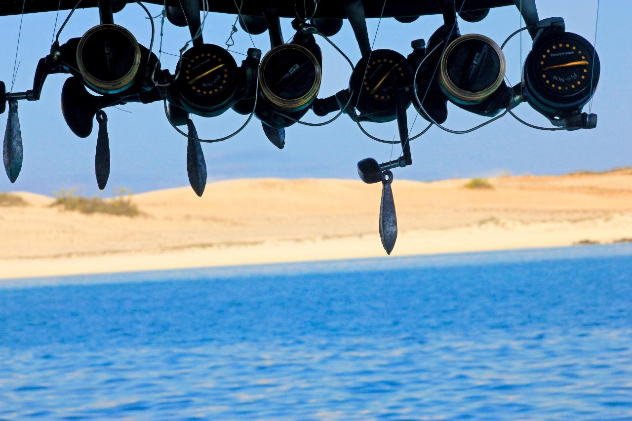 Oolard Fishing Charter
