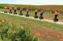 Seppeltsfield Segway Tour, Barossa Valley