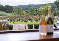 ULTIMATE Perth Hills Wine & Cider - Full Day Tour