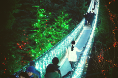 Private Christmas Tour: Vancouver & Capilano Bridge | 6 hrs