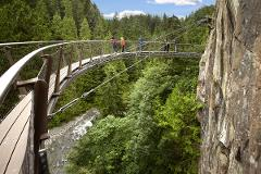 CAPILANO BRIDGE Admission