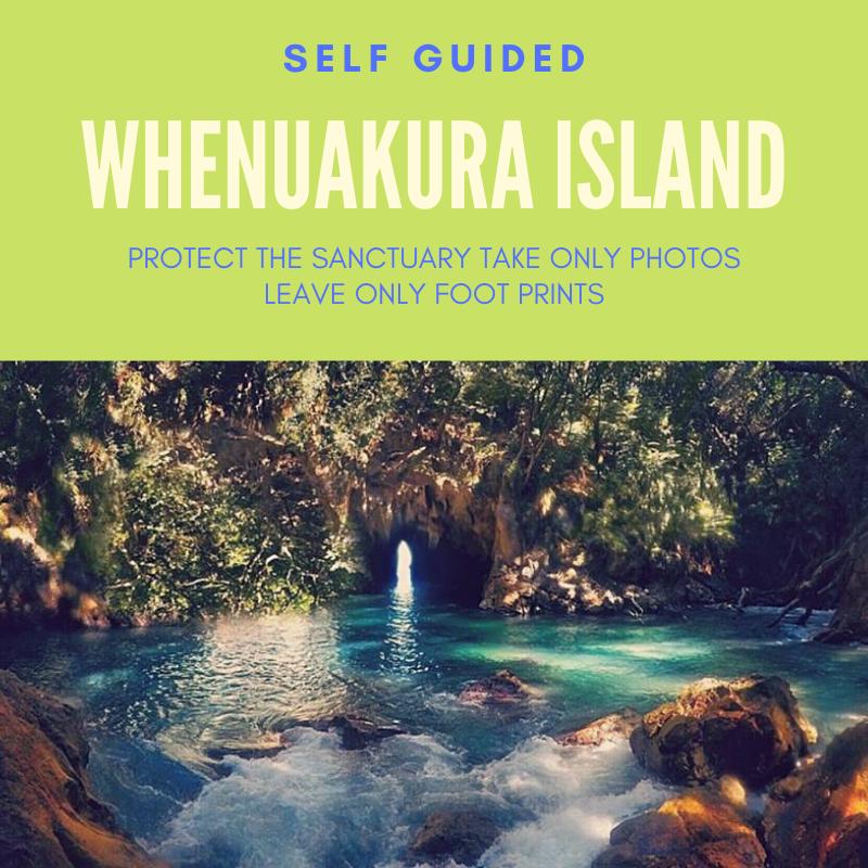 DONUT - WHENUAKURA ISLAND FREEDOM HIRE