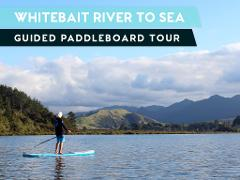 WHITEBAIT RIVER TO SEA GUIDED PADDLEBOARD (SUP) TOUR