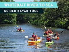 WHITEBAIT RIVER TO SEA GUIDED KAYAK TOUR