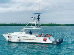 Big Taxi Boat 24 Hrs Isla Mujeres - Cancun