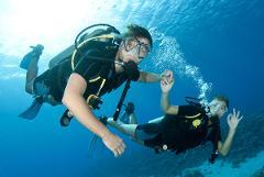 Beginner Discover Diving