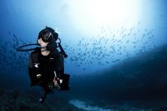 Private Reef Diving