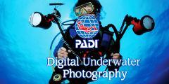 PADI Specialty Course - Digital Underwater Photographer